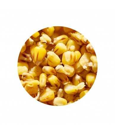 Virtos sėklos ir Kukurūzai Genlog Scopex 1kg