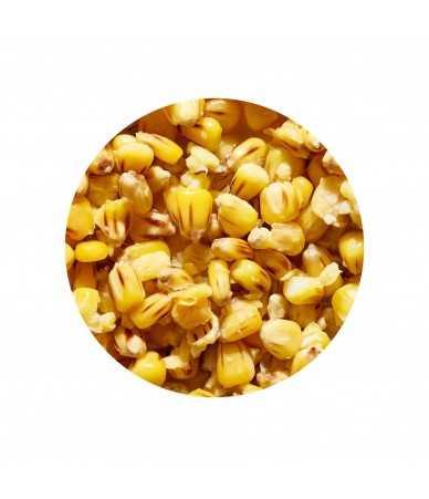 Virtos sėklos ir Kukurūzai Genlog Vanilė 1kg