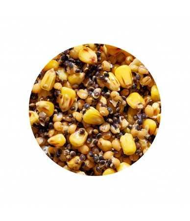 Virtų sėklų ir grūdų mišinys žvejybai Genlog Super Mix Natura 1kg
