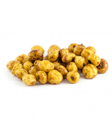 Atraktorius Carpex (tigernut) 220ml