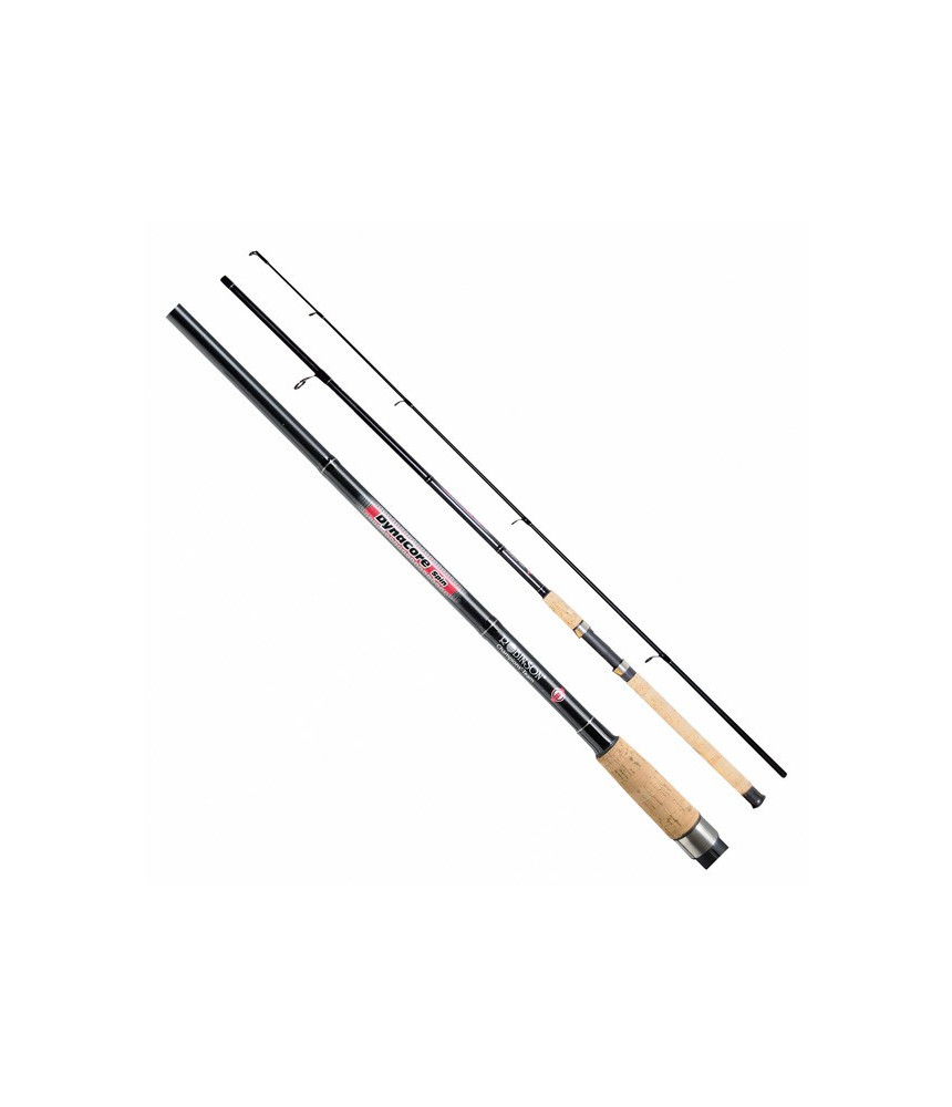 Spiningas ROBINSON DynaCore Spin 2,40m 10-30g