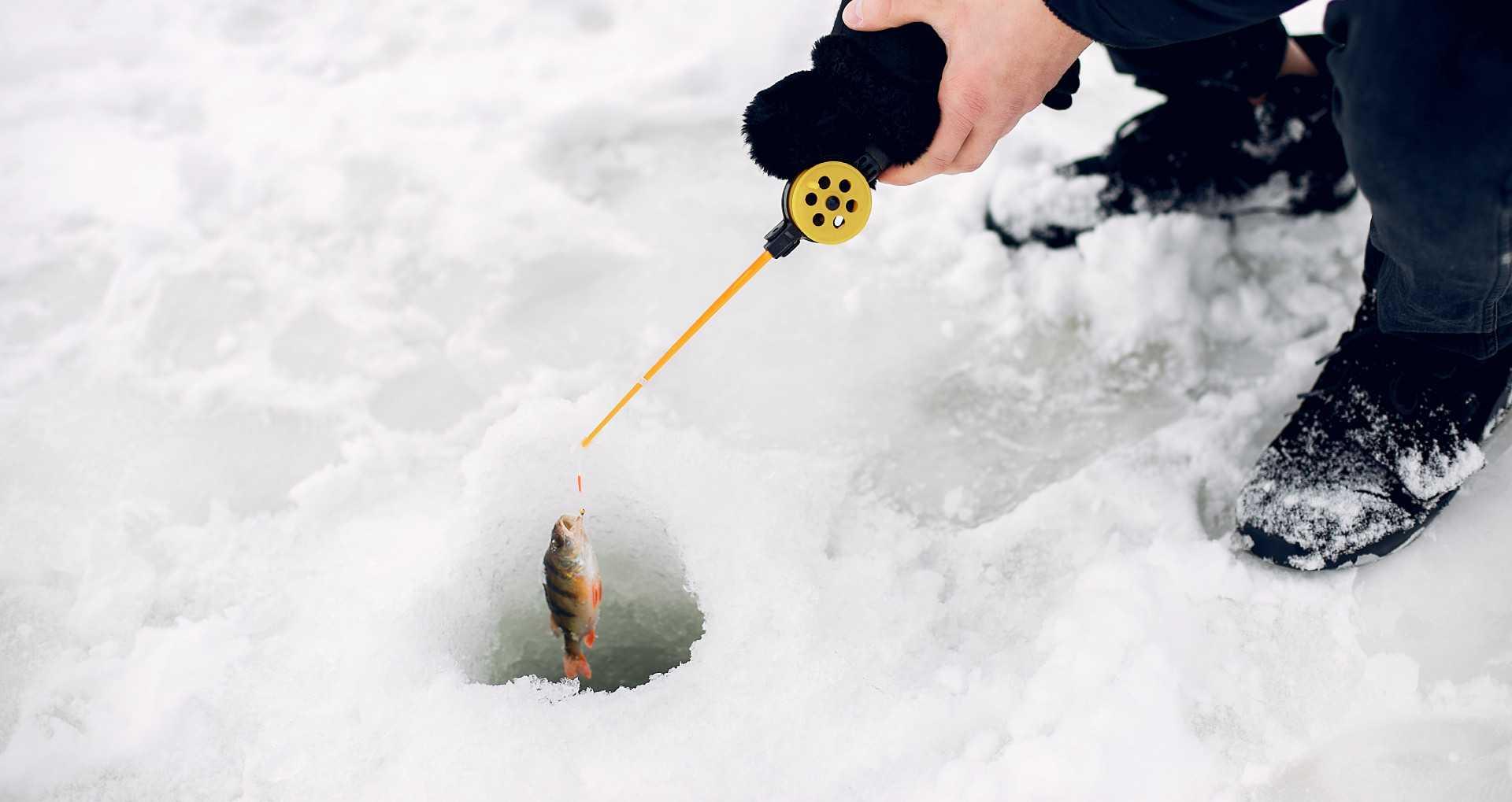 Žieminės žvejybos prekės | Rovana.lt